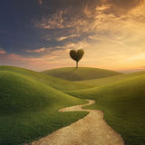 chemin vers amour