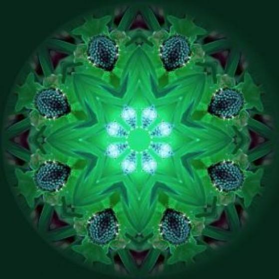 mandala-background--light_19-131109