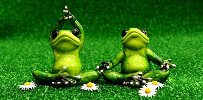 yoga grenouilles